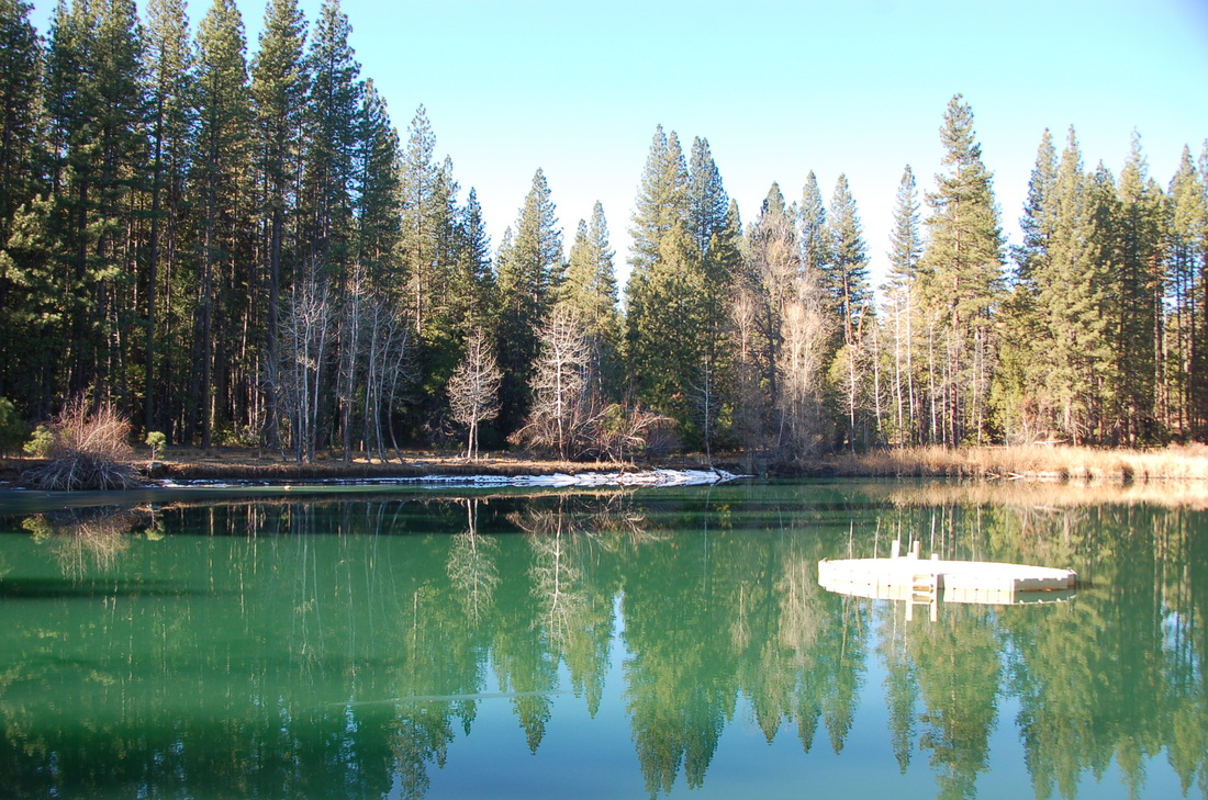 Birch Lake after Rim Fire (photo credit Neal Fahy)